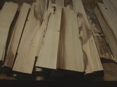 036.ツリバナからの木取り.jpg